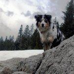 Shadow in the Sierras